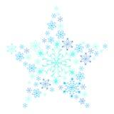 Sneeuwvlokster. Stock Illustratie