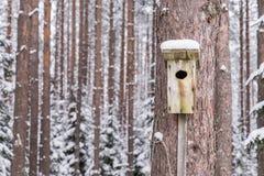 Sneeuwvogelhuis op een pijnboomboom Houten vogelhuis van hout Nestkastje in het bos, Stock Foto