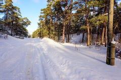 Sneeuwweg door het bos van de de winterspar in Letland Stock Fotografie