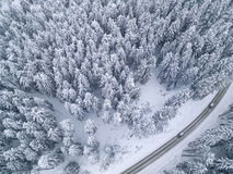 Sneeuwweg met een auto in de bosmening van het vogel` s oog stock foto