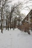 Sneeuwwerfvierkant in St. Petersburg in de winter Stock Afbeelding