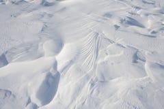 Sneeuwwildernis Royalty-vrije Stock Foto