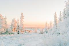Sneeuwzonsondergang in Bymarka Royalty-vrije Stock Fotografie