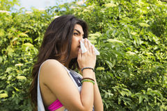 Sneeze I. Sniffing and sneezing, outside, park Stock Images