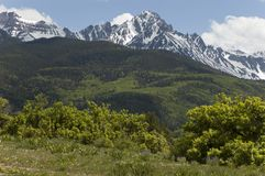 Sneffels in June. Mt. Sneffels in the San Juan Mountains, Colorado in June with foothills in the foreground Stock Photos