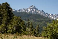Sneffels in June. Mount Sneffels in the San Juan Range Stock Photography