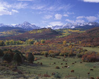Sneffels Mountain Range, CO Stock Photo