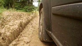Snel Berijdend Off-road Voertuig op Forest Dirt Road stock video