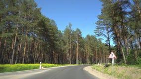 Snel drijvend op de bosweg stock footage