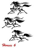 Snel galopperende paarden en mustangs stock illustratie