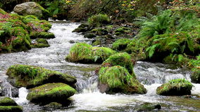Snel stromend water stock videobeelden