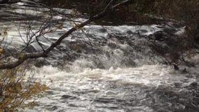 Snel stromende rivier na een zware regenval stock videobeelden