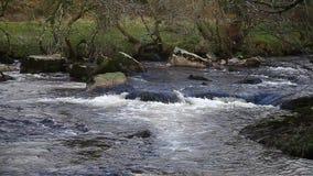 Snel stromende Stroomversnellingrivier, Rivierpijltje, Dartmoor, Devon, het UK stock video