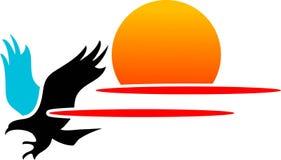 Snel vliegende adelaar Stock Foto
