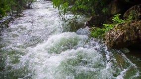 Snel Water die van Bergrivier neer stromen stock videobeelden