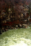 Snel water van bergrivier stock afbeeldingen