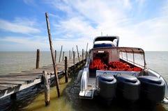 Snelheidsboot bij haven Stock Fotografie
