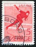 Snelheidsschaatser royalty-vrije stock fotografie