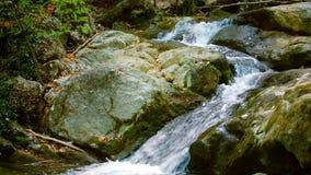 Snelle bergrivier die onder stenen stromen stock videobeelden