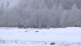 Snelle het lopen raspaarden met de ruiter van de wielkar op renbaan in de winter 4K stock footage