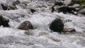 Snelle rivier die en op rotsen in bergvallei bespatten stromen, langzame motie stock video