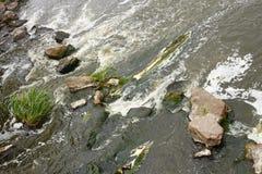 Snelle schuimende rivierstroom Stock Afbeeldingen
