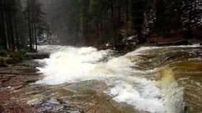 Snelle stroom Het hoogtepunt van de bergrivier van koud bronwater Pantoffel grote stenen en schuimend koel water rond Lawaai van  stock video