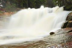 Snelle stroom Het hoogtepunt van de bergrivier van koud bronwater Pantoffel grote stenen en schuimend koel water rond Lawaai van  Stock Fotografie