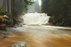 Snelle stroom Het hoogtepunt van de bergrivier van koud bronwater Pantoffel grote stenen en schuimend koel water rond Lawaai van  Royalty-vrije Stock Foto