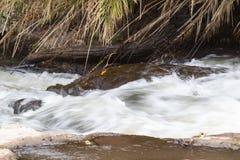 Snelle stroom in het Nationale Park van Meru Kenia, Afrika Royalty-vrije Stock Foto