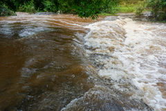 Snelle stroom van water Royalty-vrije Stock Foto