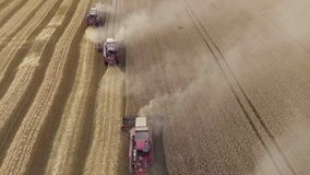 Snelle vlucht over het tarwegebied De maaimachines verzamelen de korrel horizon stock video