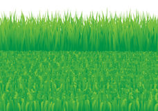snett bevuxet för gräs vektor illustrationer