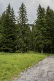 Snezhanka ist eine Spitze im Rhodopes, Bulgarien Es befindet sich 15 Kilometer weg von der Stadt von Smolyan Stockbild
