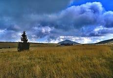 Snezka в гигантских горах в чехии стоковое фото rf