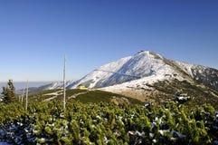 Snezka maximal 1602 m n.m. Image libre de droits