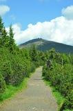 Snezka mountain royalty free stock photos