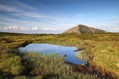 Snezka mountain with peatbog Stock Image