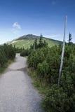 Snezka, panorama du Krkonose Mts. Photographie stock libre de droits