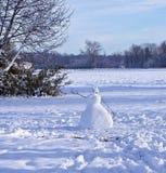 Snöfält med snögubben Arkivbild
