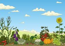 Säng för grönsakträdgård Arkivbild