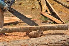 Snickare Cutting Wood royaltyfri foto
