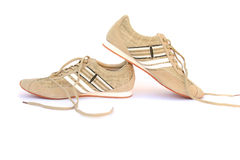 Snickers shoes Royalty Free Stock Photo