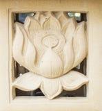 Snida lera av lotusblomma, näckrosblomma Royaltyfri Foto