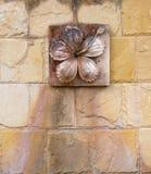 Snida lerablomman på väggen royaltyfri foto