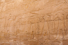 Snida på den Karnak templet Royaltyfri Foto