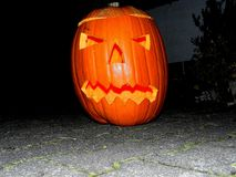 sniden halloween pumpa Royaltyfri Bild