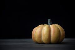 sniden halloween pumpa för den grymma säger miniatyrreaperen halloween för kalenderbegreppsdatumet lyckliga holdingen scythestand Fotografering för Bildbyråer