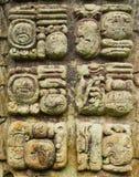 Sniden Mayan sten skriva symboler Royaltyfria Bilder