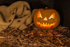 Sniden pumpa för Halloween Fotografering för Bildbyråer